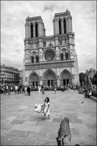 Paris Ile de la Cité Notre Dame de Paris Black and White Photograph