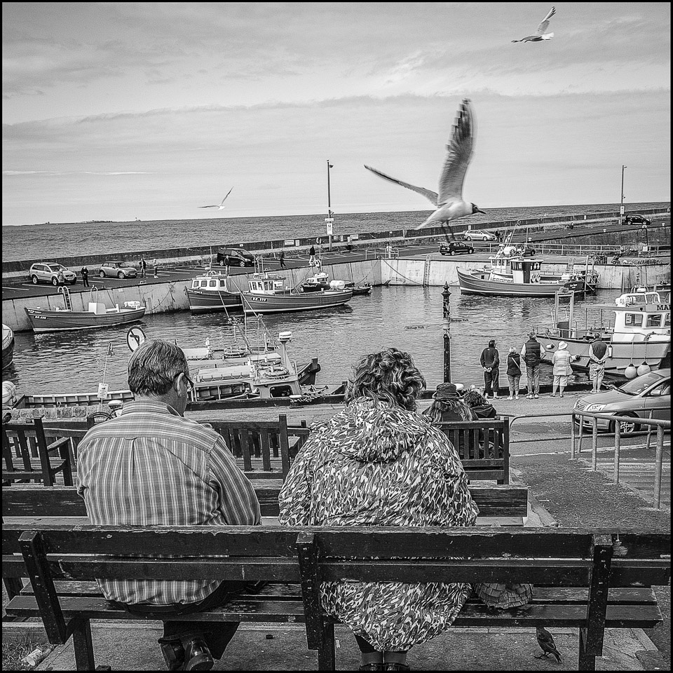 black and white photograph of a couple on a bench at Seahouses in Northumberland UK