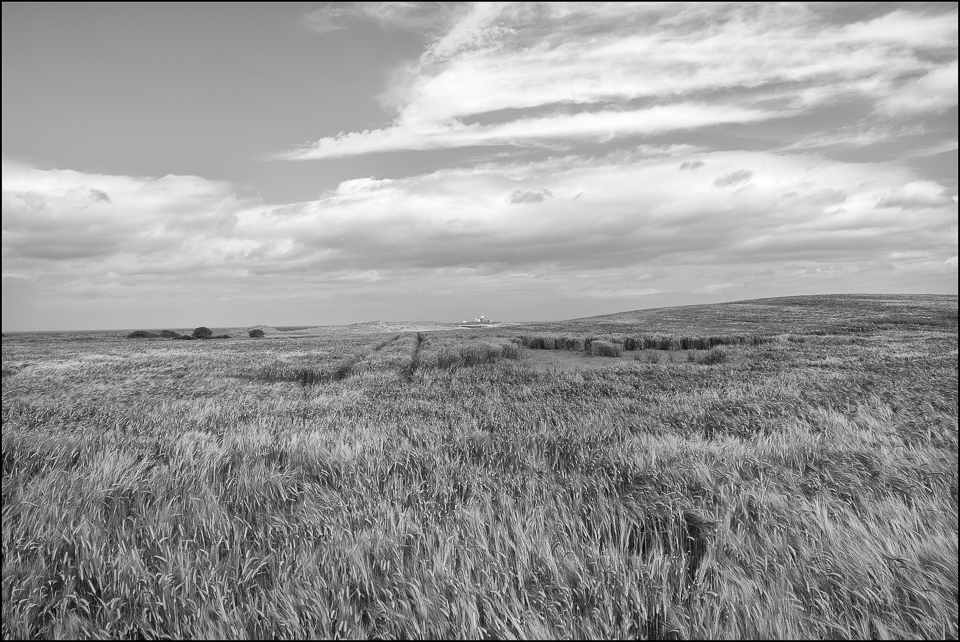 Amble Lighthouse seen from the fields black and white photograph